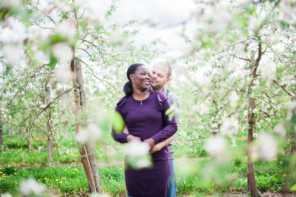 session de photographie fiancaille au verger fleur pommier verger cidrerie denis charbonneau - mont-saint-gregoire - quebec