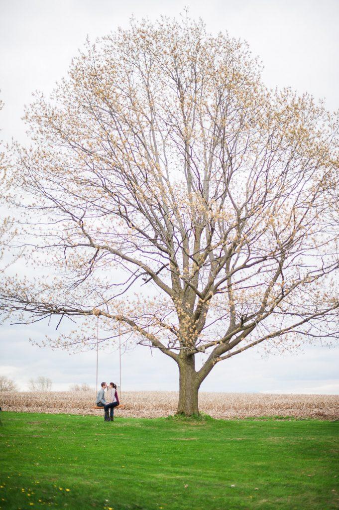 couple amoureux arbre balancoire geante champs printemps