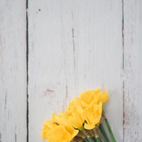 fleur jaune printemps table de bois
